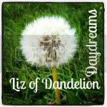 Liz of Dandelion Daydreams